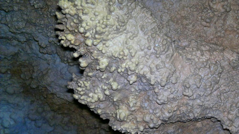 jaskinia-czarna--2011-11-26-388