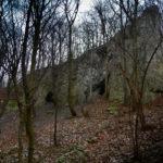 Jaskinia Dzika (2018-01-13)
