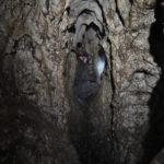 Jaskinia Szeptunów - Szmaragdowa (2018-03-29)