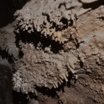 Jaskinia Wierna (2018-09-17)